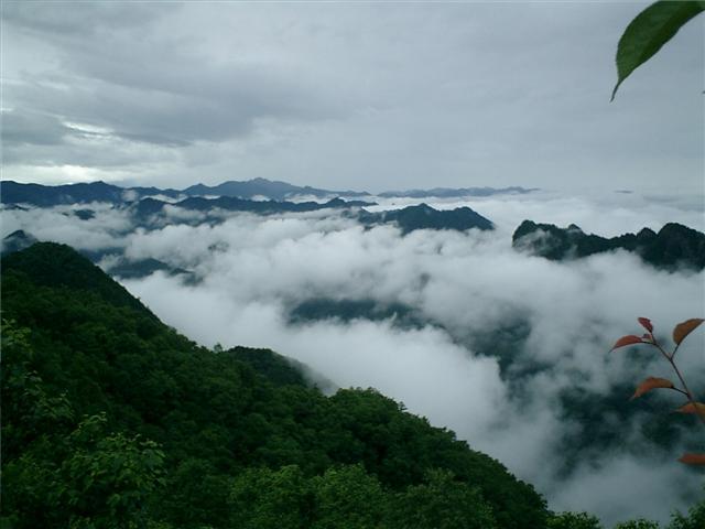雲海の上に山並みの頂上が
