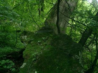 弘法井戸わきの大岩