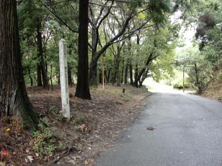 山道の写真